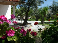 Residential Complex for sale in Asklipio, Kos.